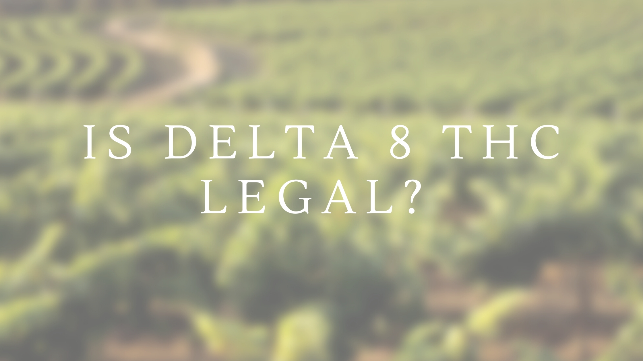 Is Delta 8 Thc Legal?
